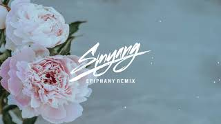 Gambar cover BTS (방탄소년단) - Epiphany (Smyang Remix)