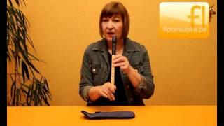 flötenlübke.de - Blockflötenunterricht (Stunde-0).avi