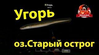 Російська рибалка 4,RF4, Вугор на старому острозі