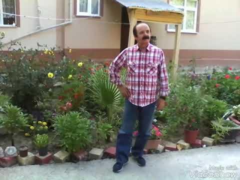 Mehmet Bozdoğan Yitirdim yavrumu yol kenarında u.h.