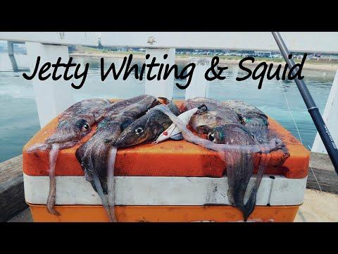 Whiting & Squid | Basic Jetty Fishing