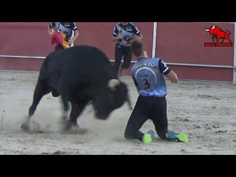 Cuarta Fase Castellano De Oro. Charro De Oro. Santa Marta De Tormes. 28 Julio 2019