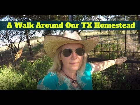 A Walk Around Our Texas Homestead