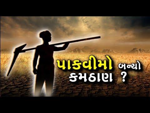 #Mahamanthan: પાકવીમો ક્યાં અટક્યો? ખેડૂતો સાથે કઇ એજન્સીઓ કરે છે અન્યાય?   Vtv News