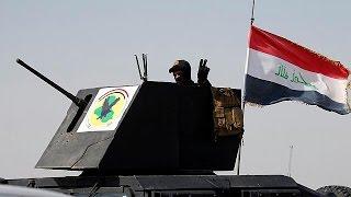 Iraq army begins assault on ISIL bastion of Falluja