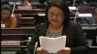 Sesión 394 del Pleno (23-06-2016)