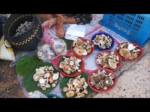 Asian street food 2018 in thailand - Thai food
