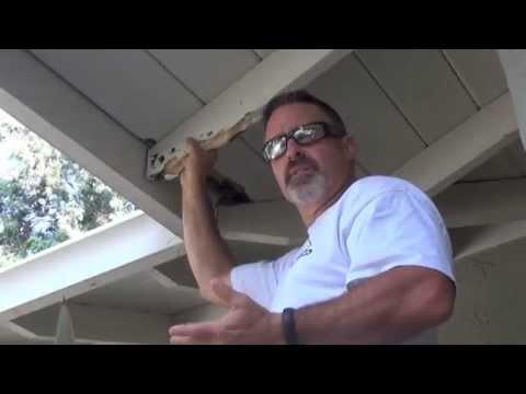 Roof Repair- Termite and Dry Rot Damage