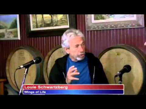 Louie Schwartzberg Wings of Life Rick Love Interviews