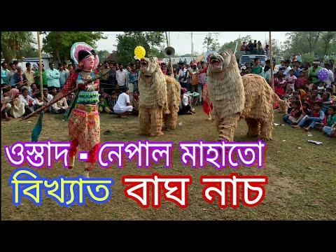 PadmaSri  Nepal Mahato Bag Nach //Tiger...