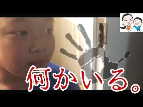 学校休みの平日😱リョウと事務所のホラー部屋【ベイビーチャンネル 】