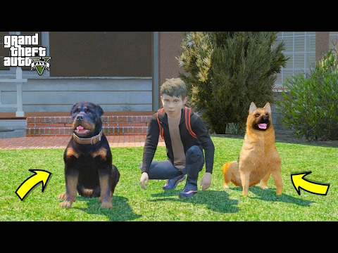 GTA 5 REAL LIFE TEEN MOD #24 OUR NEW DOGS!