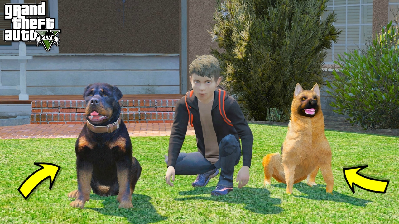 Gta  Real Life Teen Mod  Our New Dogs