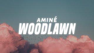 Aminé - Woodlawn (Lyrics)