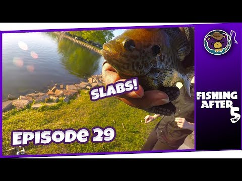 Late Spring Bluegill Fishing At Lady Ann Lake With (Madison, AL) - Fishing After 5
