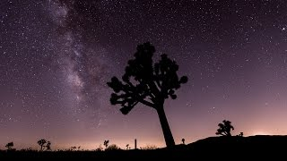 60 Seconds Timelapse of the Perseid Meteor Shower in Joshua Tree Park