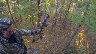 Kentucky Deer Archery Season - 3 Tags Filled