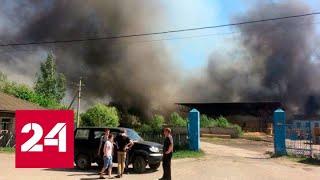Вспыхнувший лесокомбинат тушат с помощью пожарного поезда - Россия 24 