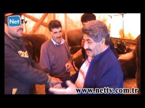 Gebze'de Kurban Satışları Kıran Kırana Başladı