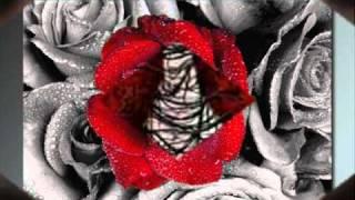 Sleipnir - Zwei Herzen Schlagen