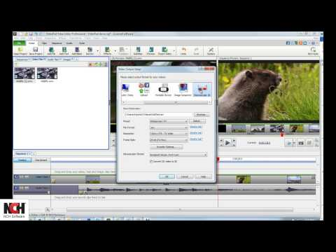 VideoPad Video Editing Software | Saving Your Video