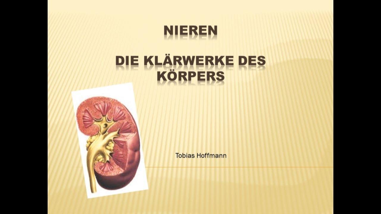 Die Niere leicht erklärt, Einfach erklärt. Niereninsuffiziens ...