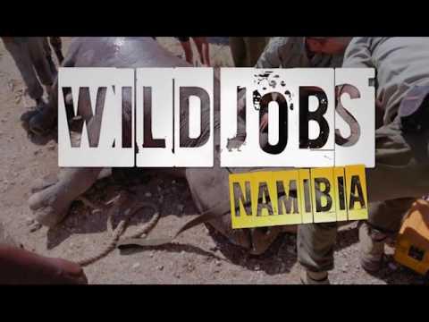 Wild Jobs Namibia S02 E03