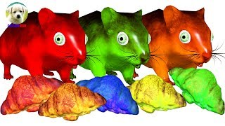 Learn Colors Animals with Mouse Eat Cakebread and Cat Fun Cartoon for Kids