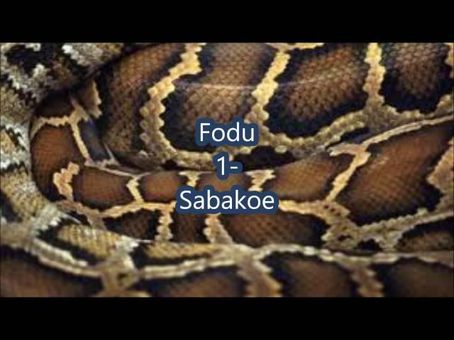 fodu 1 sabakoe