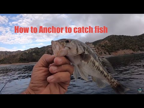 Fishing Tip - How To Anchor A Boat On Calico Bass Fishing Spots At Catalina Island