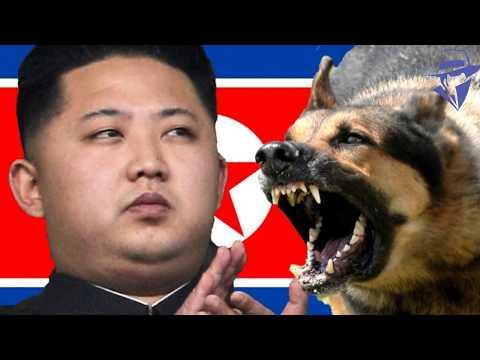 नार्थ कोरिया के चौंकाने वाले तथ्य // NORTH KOREA FACTS IN HINDI