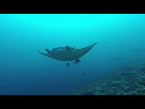 Bernard Indian Ocean Maldives MV Orion 2015/2016 part1