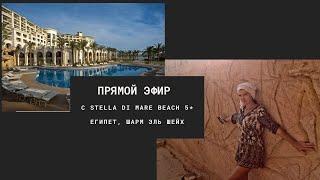 Прямой эфир с Египтом отель Stella Di Mare Beach Hotel Spa 5 Шарм эль Шейх