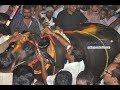 Yadav Song | Nalla Vade Golla Vade | Sadar Special Vol.1 |
