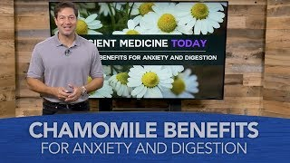 Chamomile Benefits for Anxiety and Digestion