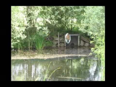 Avatar Paul am Teich