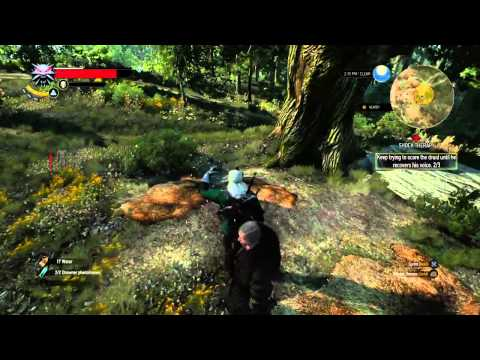 Witcher 3 Skellige Mute man Side Quest (how to) NOT Glitched