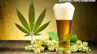 Технопранк - Доставка пива-1 (1/2) (1v4n)(Заказано на Ваш адрес! Пиво и наркотики! Плейлист с лучшими технопранками http://www.youtube.com/playlist?list=PLbNWD-ICEEihaaYbBPeqVnd..., 2016-06-16T12:00:30.000Z)