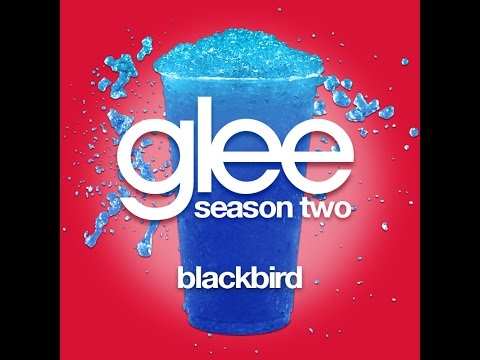 Glee - Blackbird [LYRICS]