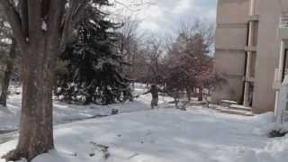 Основы зимнего паркура или How to Free Run in Winter 2014 RUS