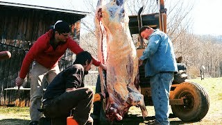 beef-butchering-on-family-farm-homestead-food-production