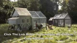 Building Plans For A Chicken Coop