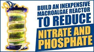 Build an inexpensive Macroalgae Reactor to reduce Nitrate and Phosphate