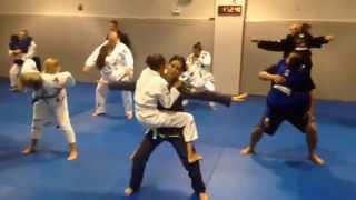 Parents and Kids Jiu Jitsu Class