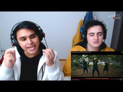 [Reacción] Black Eyed Peas, El Alfa - NO MAÑANA (Official Music Video) | ANYMAL LIVE 🔴