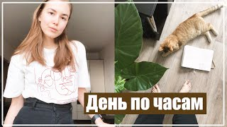 постер к видео МОЙ ДЕНЬ ПО ЧАСАМ: Йога, Желтые Руки и Усталость || Alyona Burdina