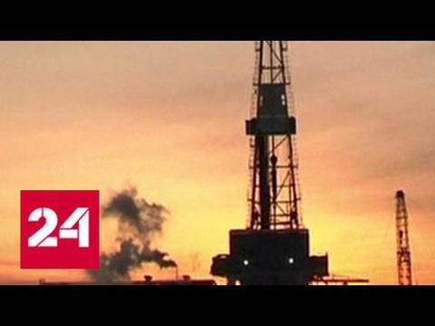 Россия сократила добычу нефти на 185 тысяч баррелей в сутки