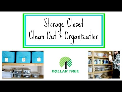 Dollar Tree Organization | Basement Storage Closet Clean Out | Organize with Me