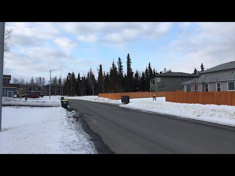 Live Stream - Anchorage Alaska