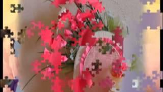 видео Купить Белые розы в Риге с доставкой. Цветы дешево и качественно!